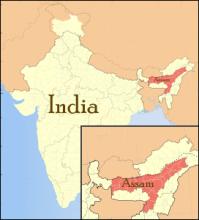Mapa de Assam